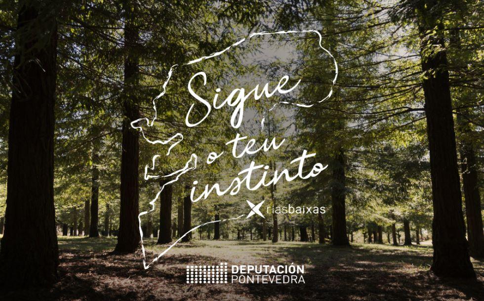 La campaña promocional de Turismo Rías Baixas logra un gran impacto online