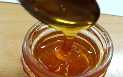 La IGP Mel de Galicia forma sobre el análisis sensorial de la miel