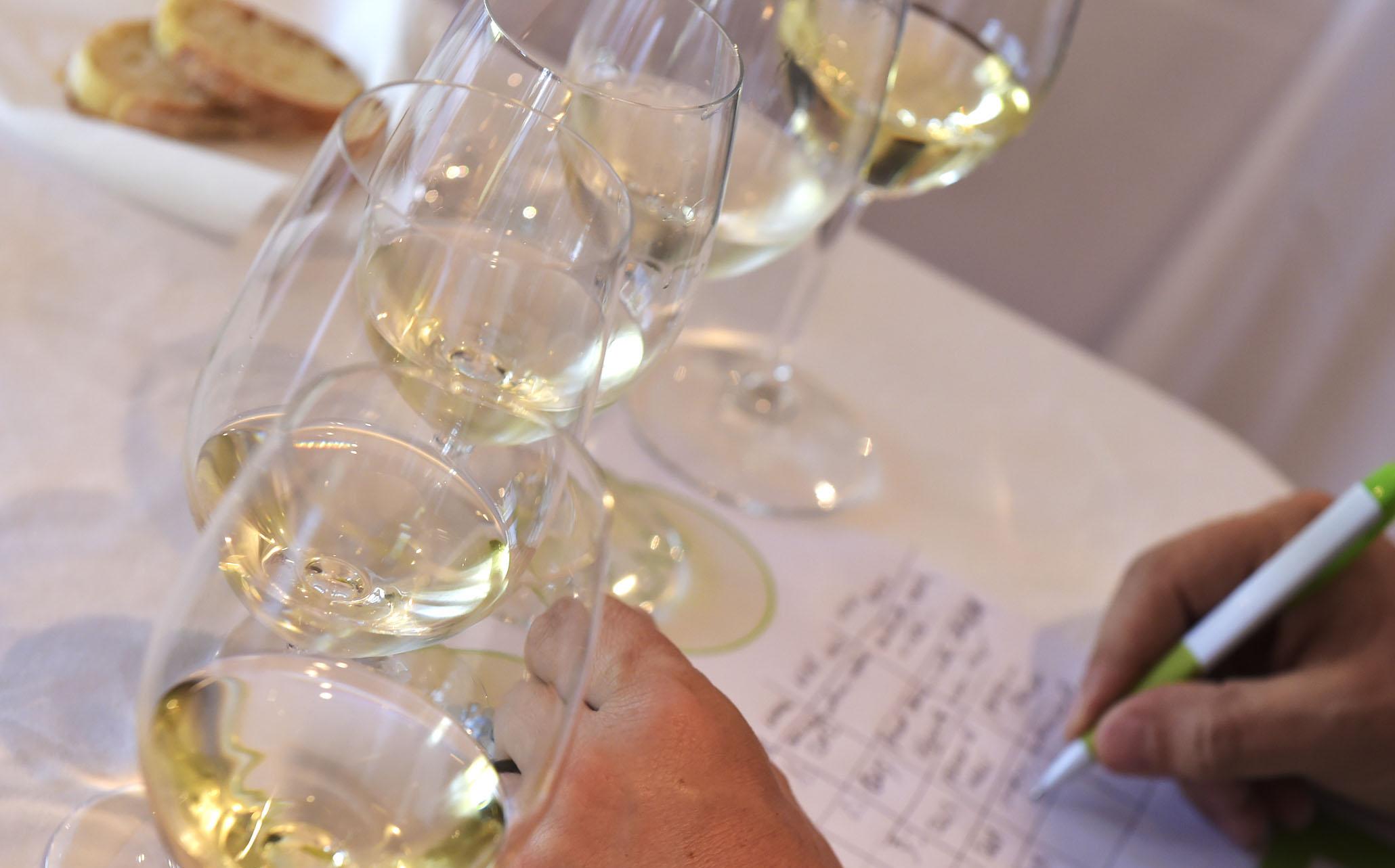 'Ruta de Catas', la propuesta de la Ruta do Viño Rías Baixas para comenzar el año
