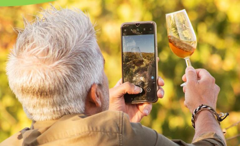 La Ruta del Vino y Brandy del Marco de Jerez busca influencers de 'Pagos del Sherry'
