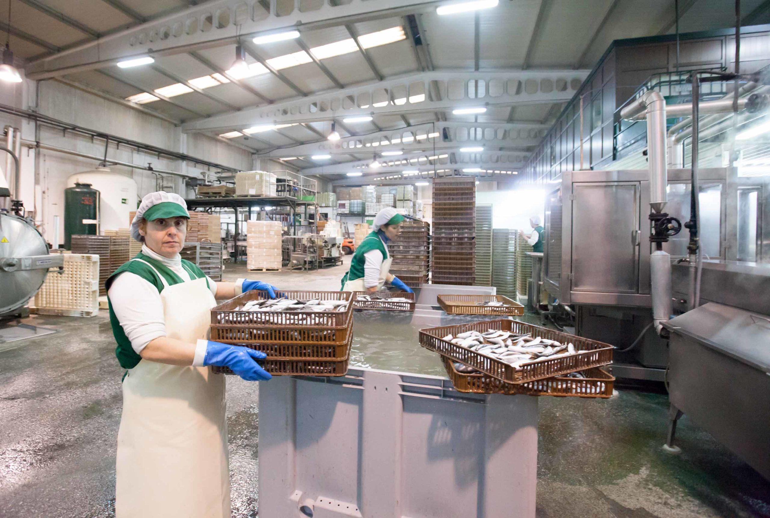 La Xunta saca una orden de ayudas para mejoras en empresas de transformación de productos pesqueros