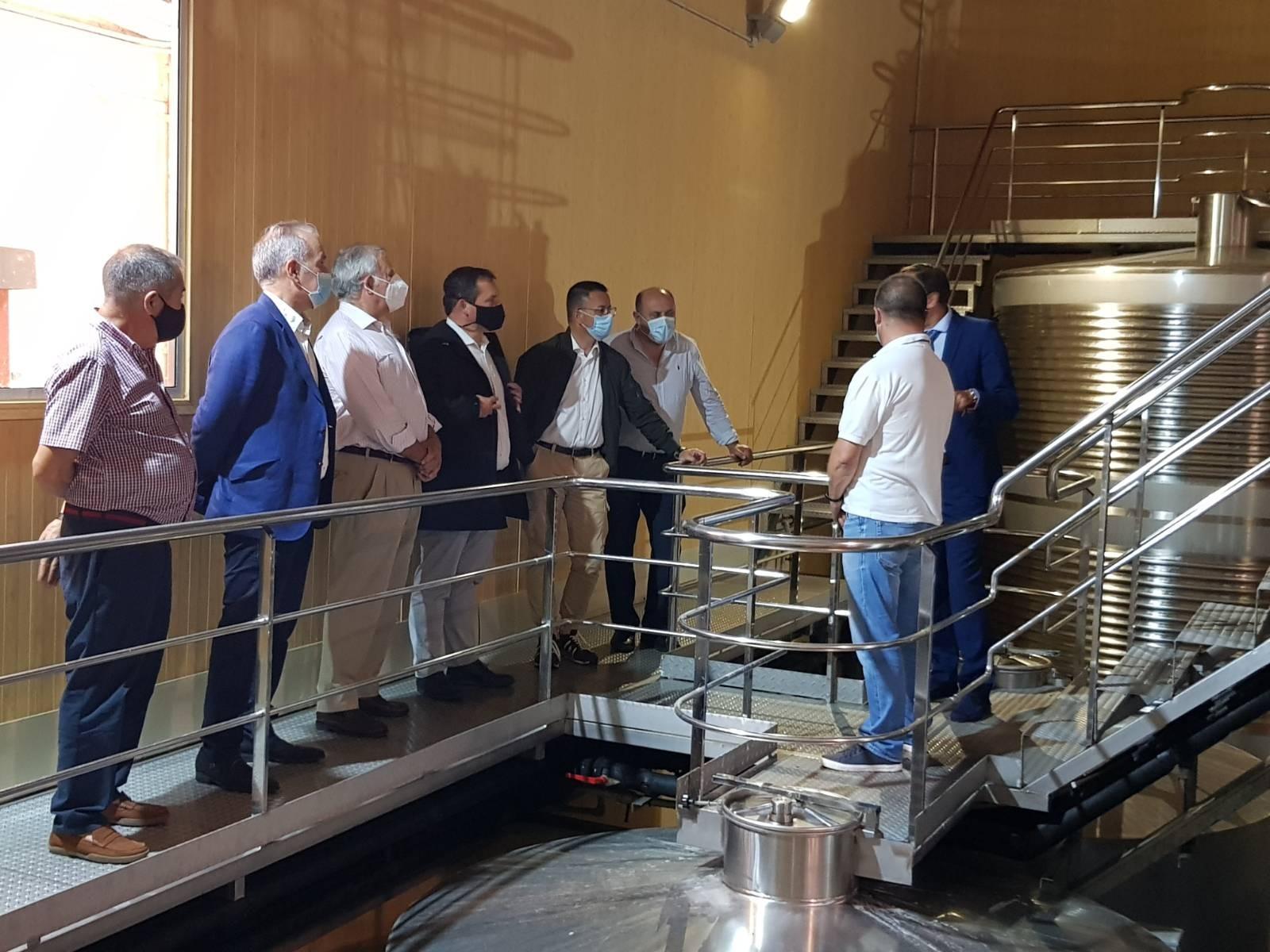 Entra en vigencia el Plan Estratégico de Dinamización para el sector vinícola, la recuperación de tierras y los préstamos a la vendimia