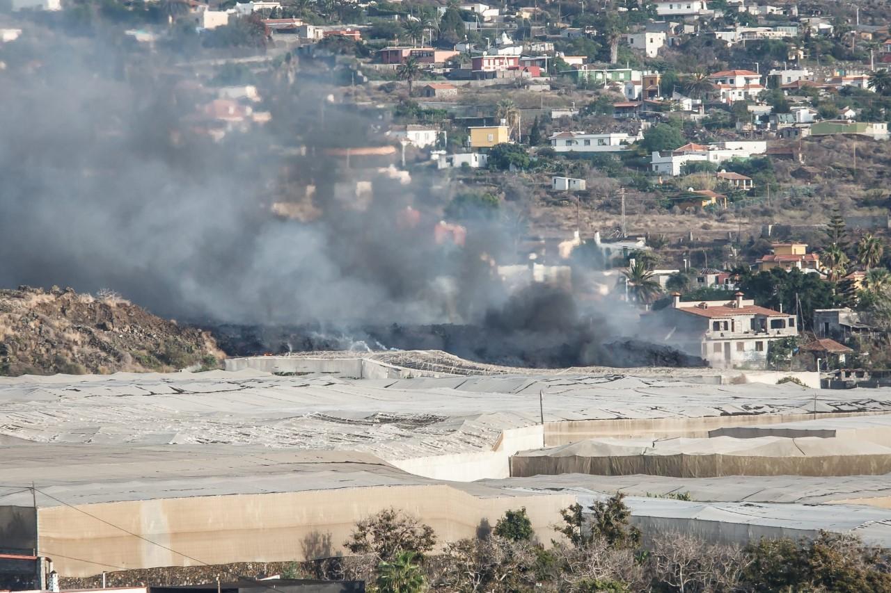 Iniciativa solidaria de los hosteleros en favor de los afectados por el volcán